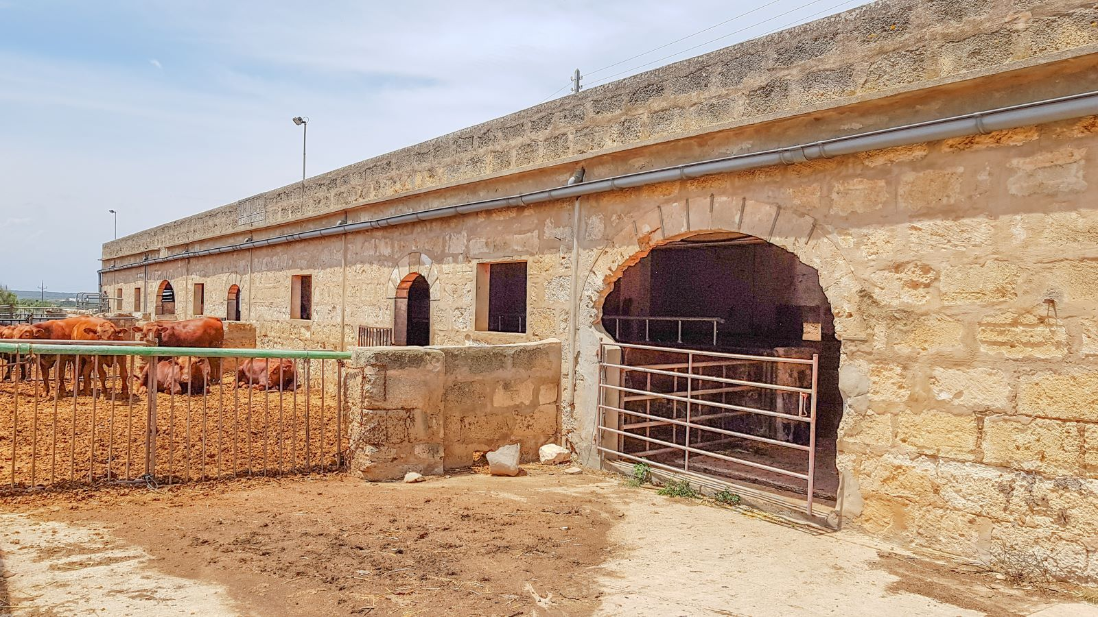 Cattle Ranch in Ciutadella Ref: V2612 27