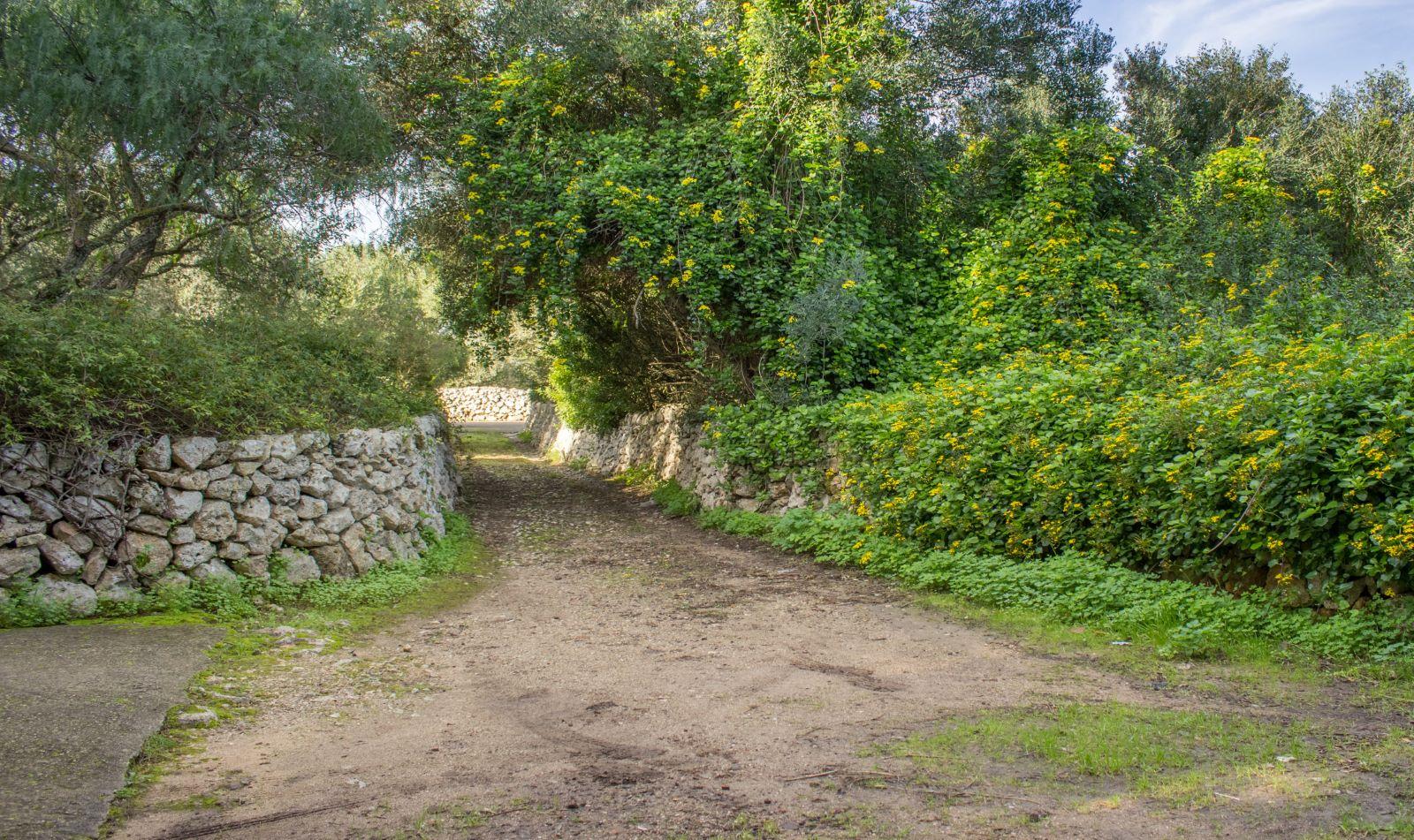 Casa de campo en Trebaluger Ref: S2682 2