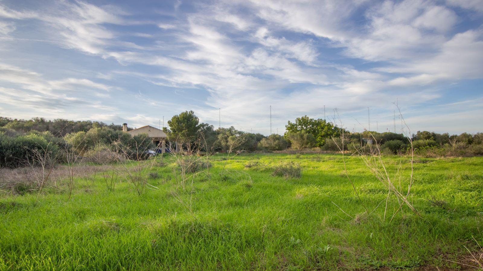 Land in Binissaida Ref: S2688 3