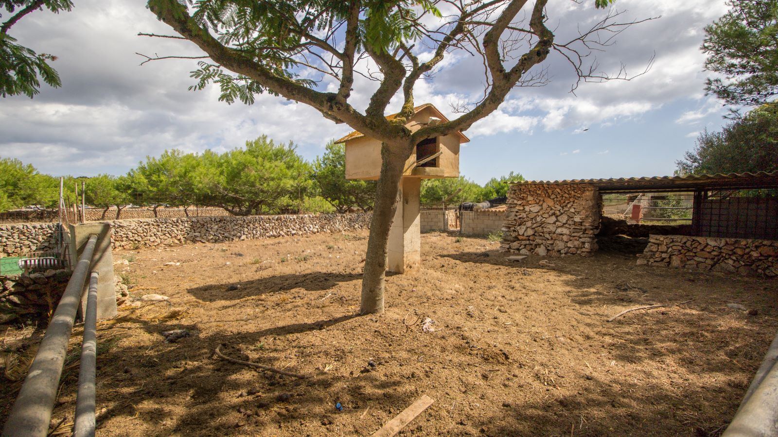 Casa de campo en Binissaida Ref: S2756 25