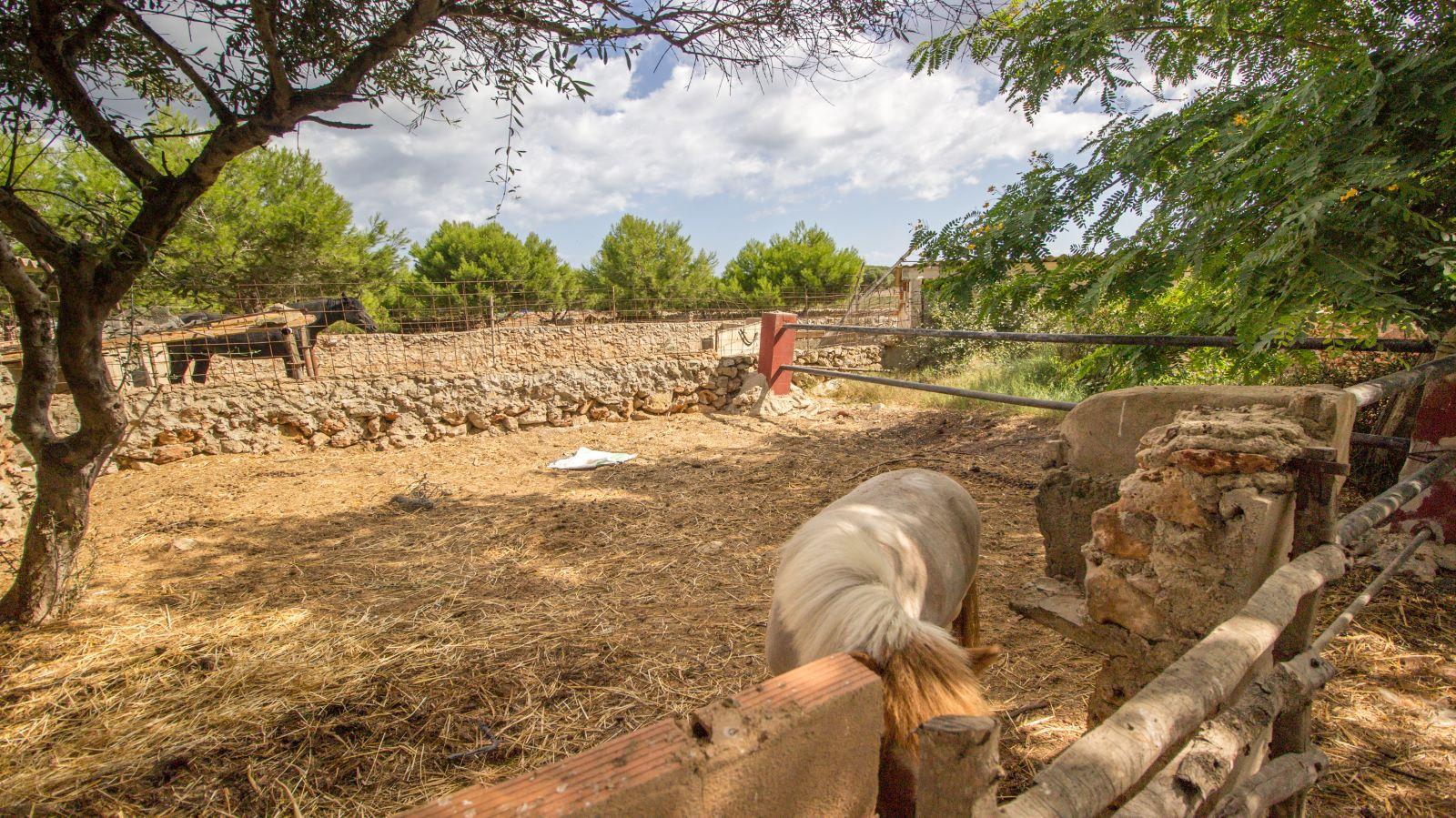 Casa de campo en Binissaida Ref: S2756 26