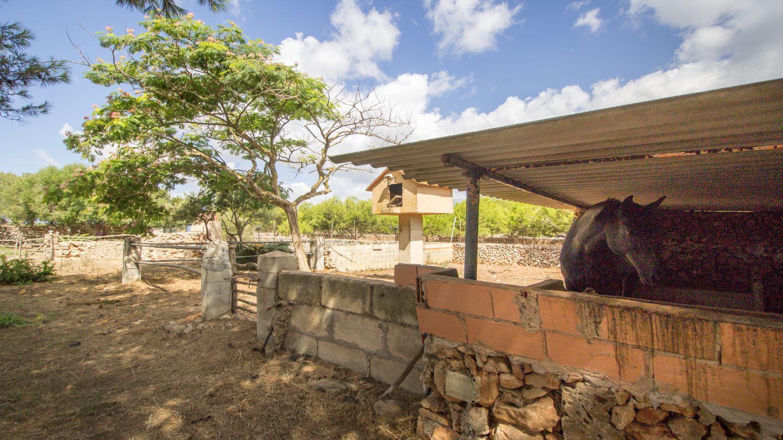 Casa de campo en Binissaida Ref: S2756 47
