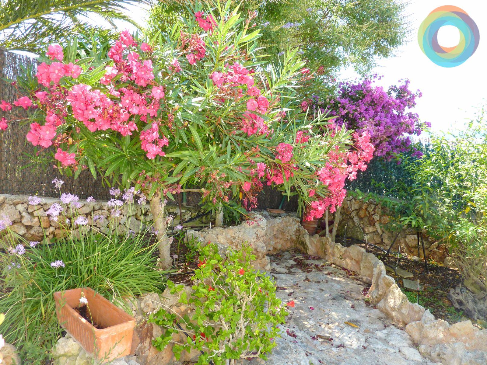 Villa in Binibeca Vell Ref: S2145 28