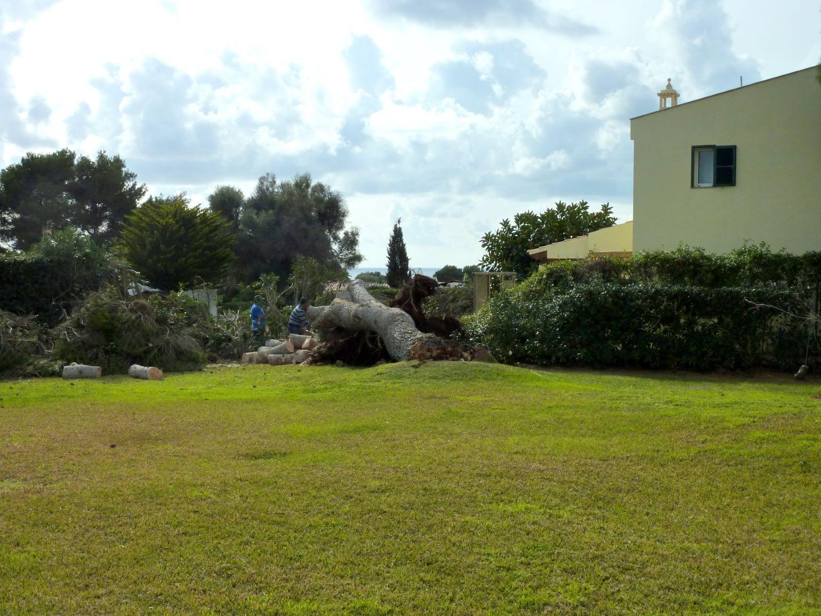 Villa in Binibeca Nou Ref: S2217 6