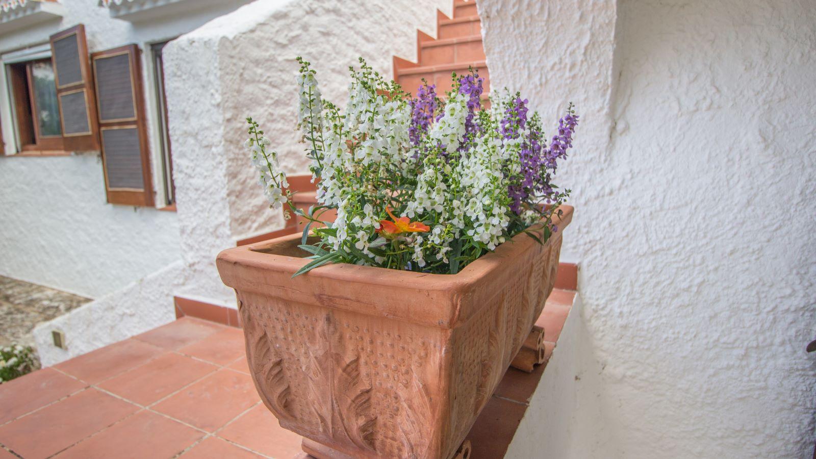 Villa à Binibeca Nou Ref: SH1256 46