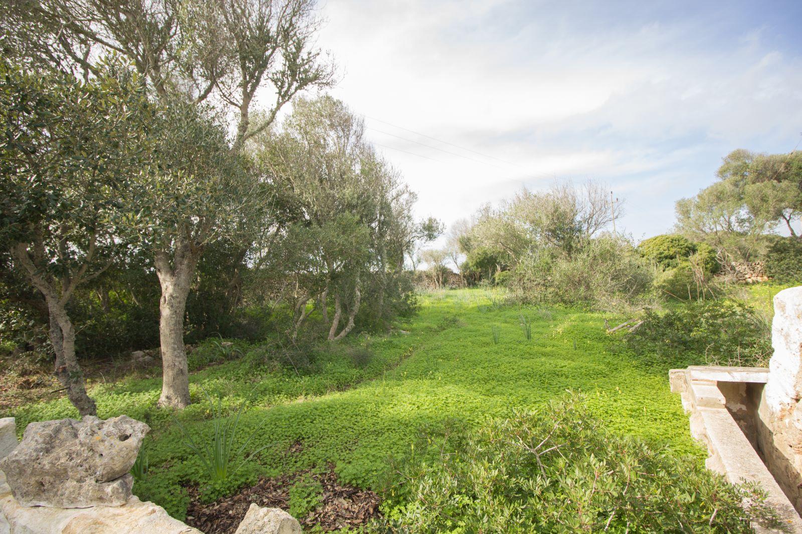 Landhaus in S'Algar Ref: S2563 5