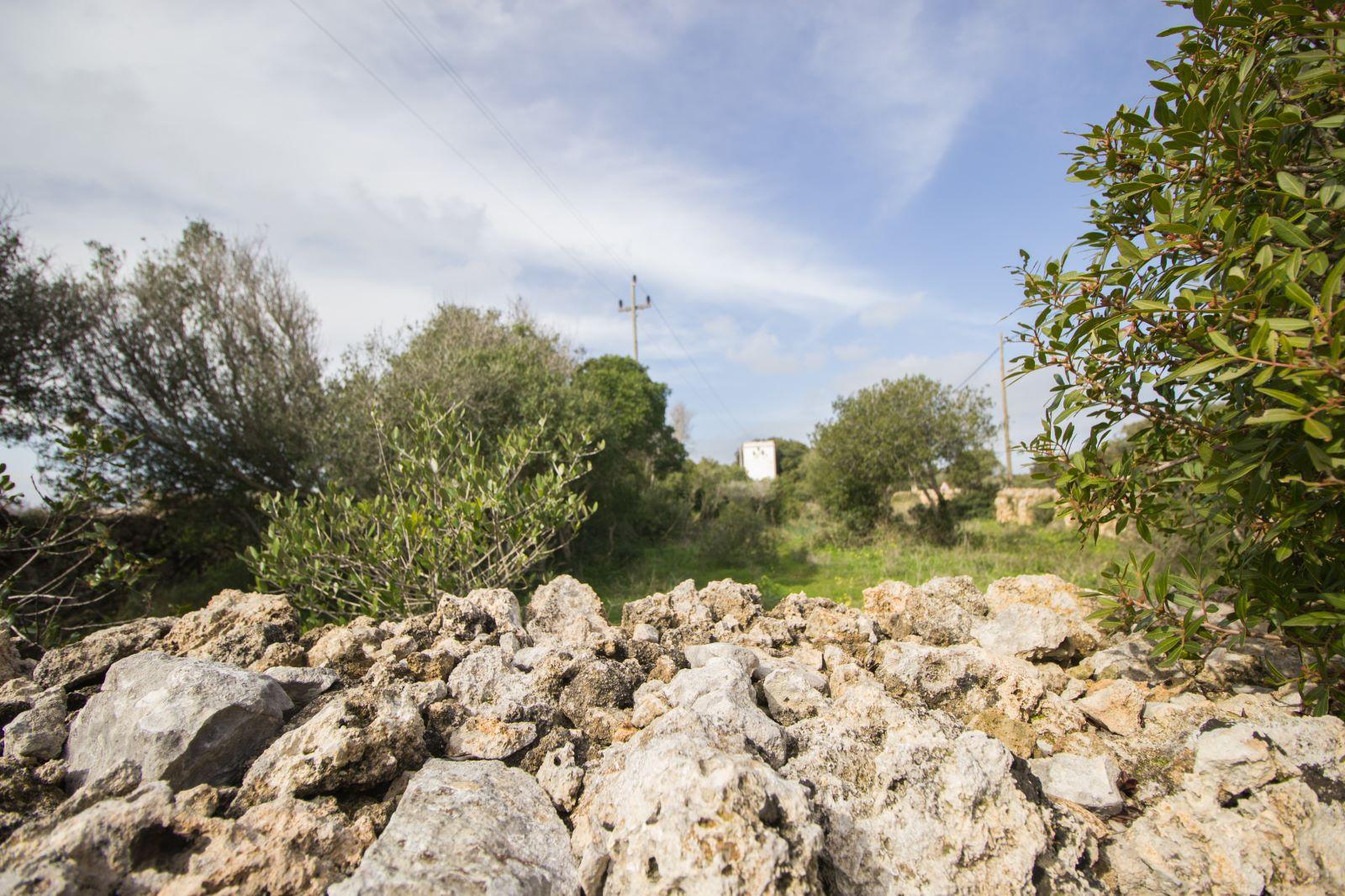 Landhaus in S'Algar Ref: S2563 6