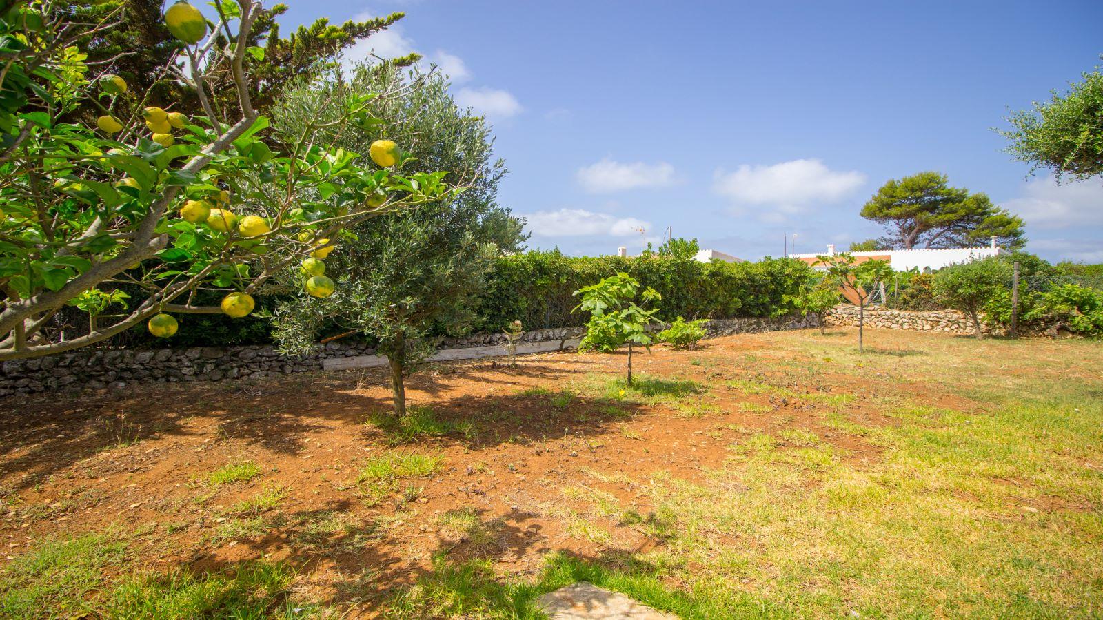 Villa in Binibeca Nou Ref: S2615 7