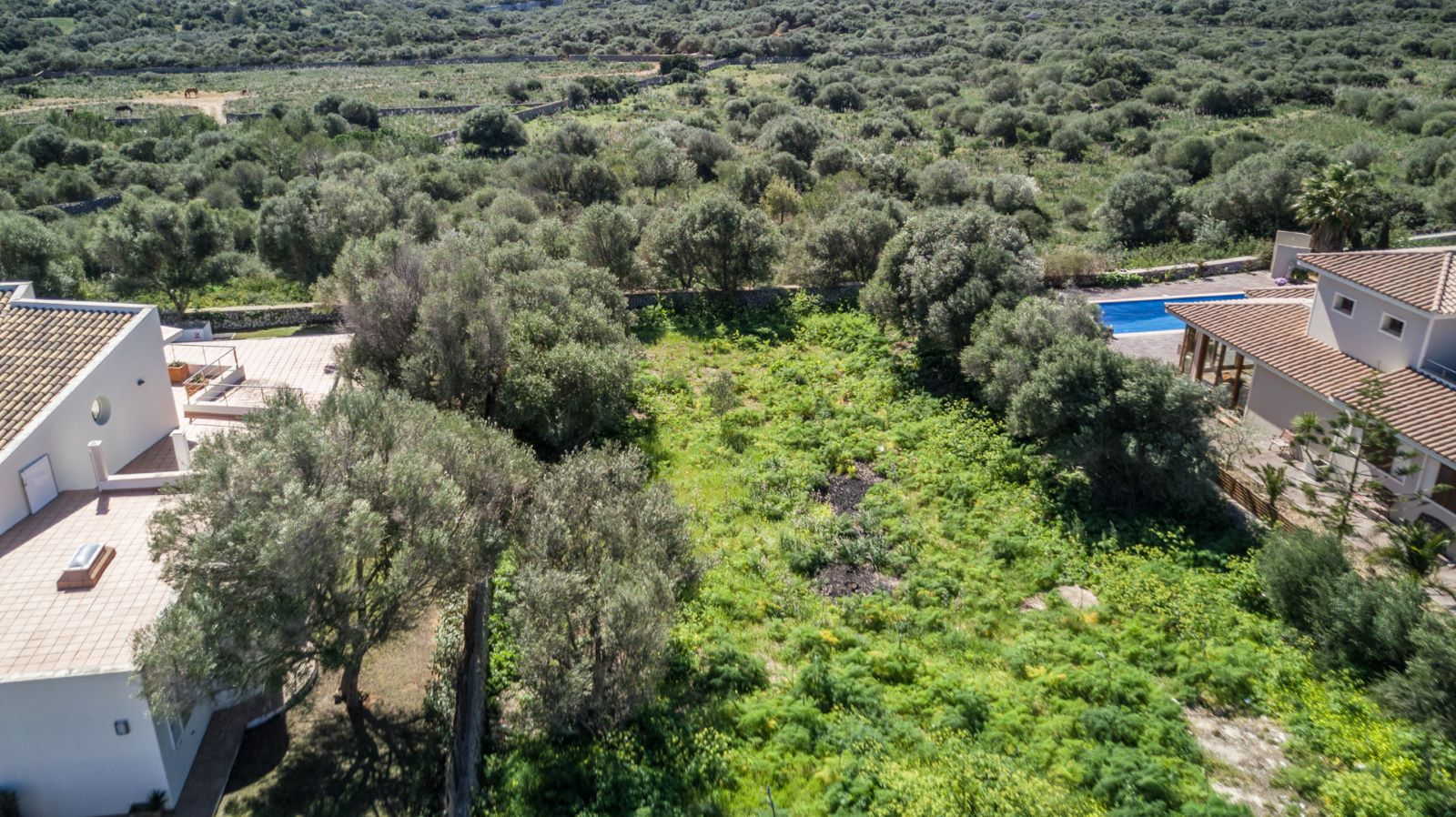 Plot in Binixica Ref: H2216 4
