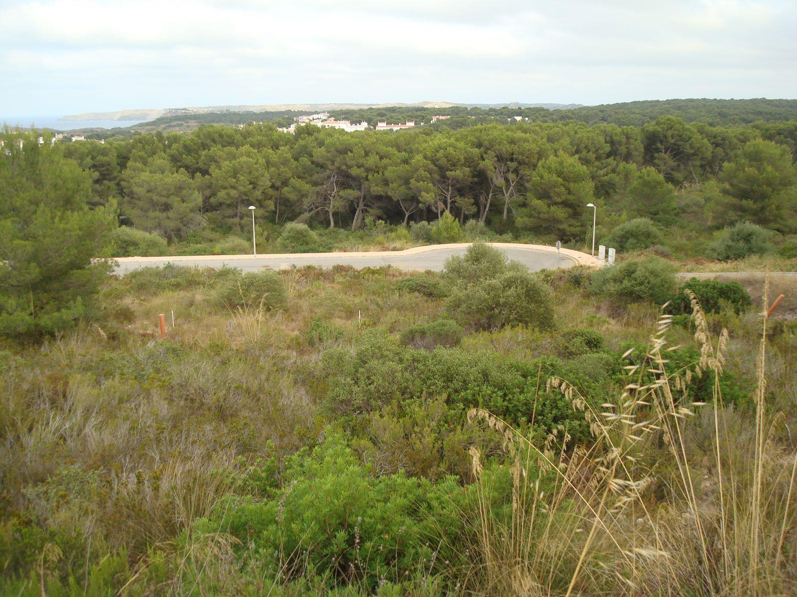 Bauparzelle in Coves Noves Ref: H2323 4