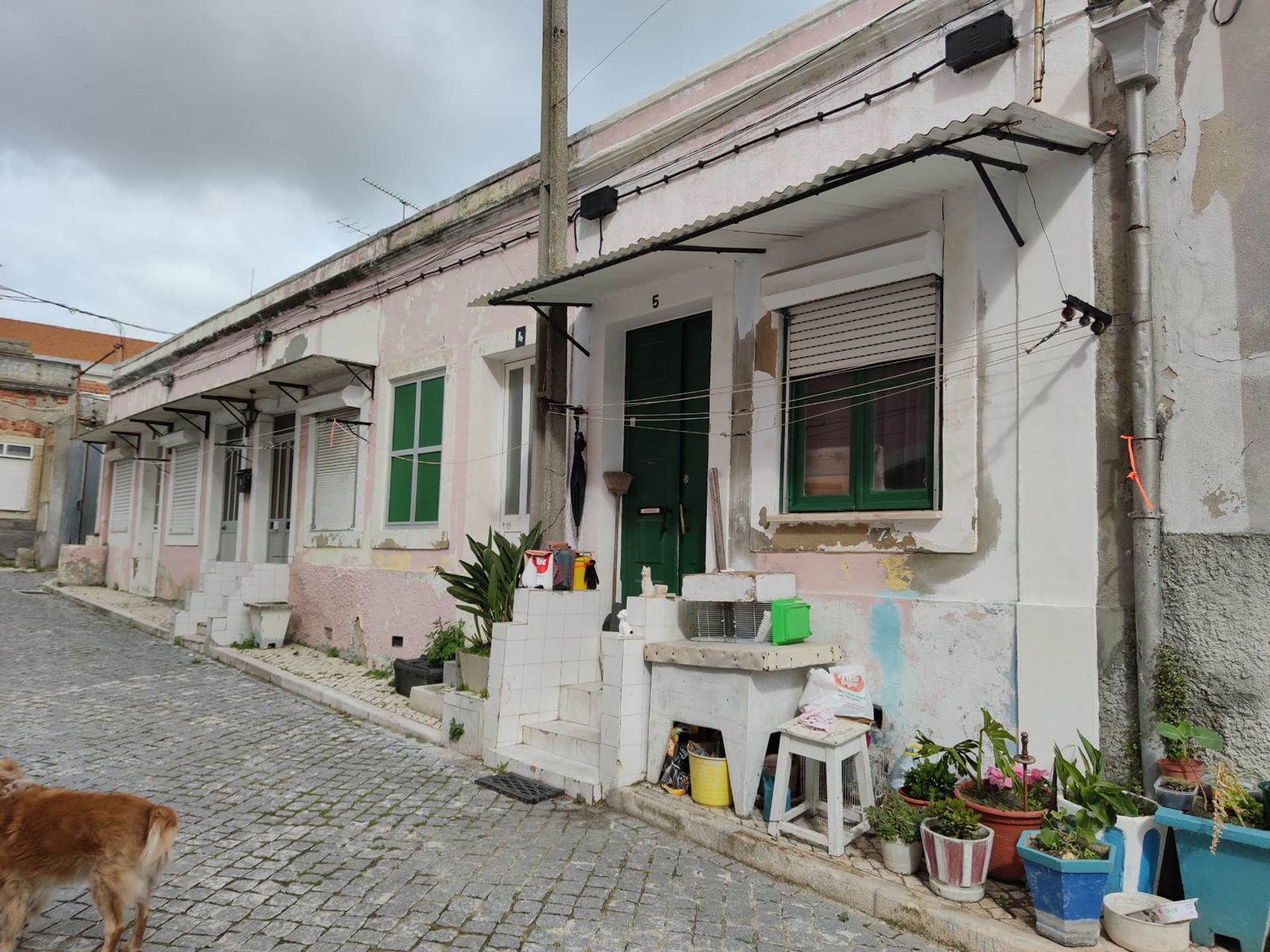 2 Buildings in Marvila to recover