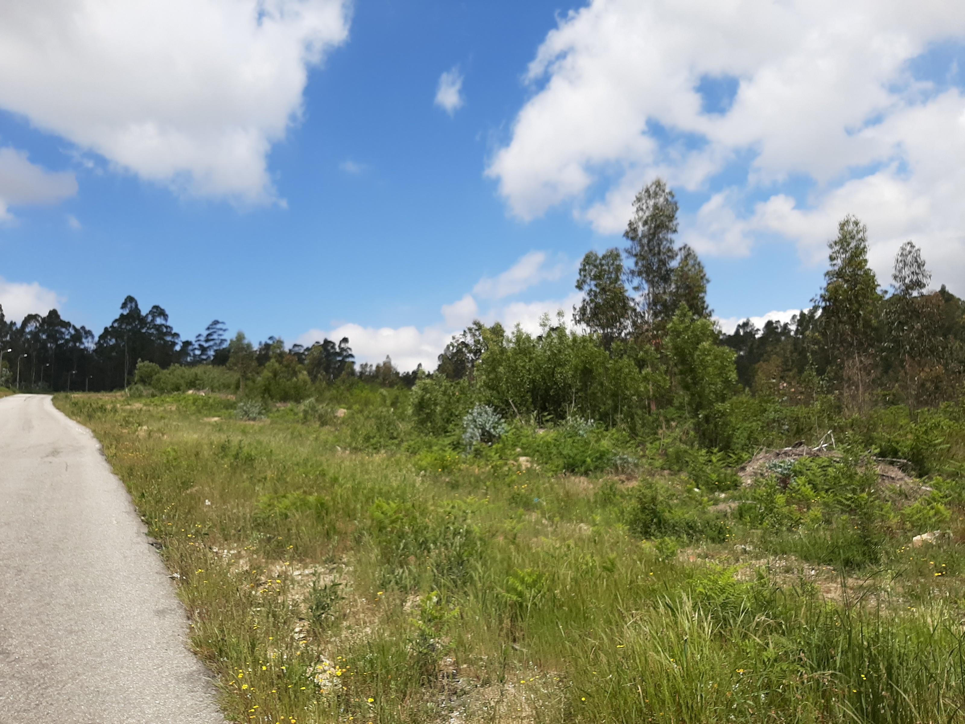 NotApplicable Land in São Miguel do Souto e Mosteirô –