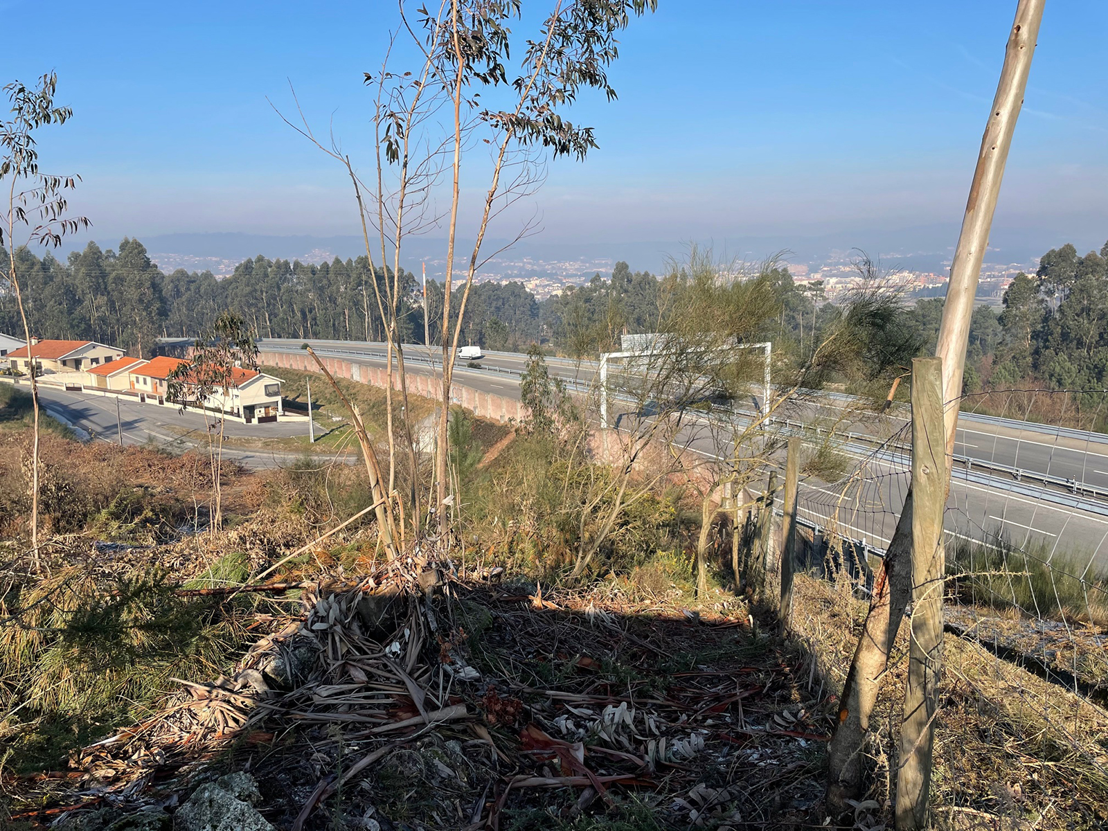 New Land in Paços de Ferreira –